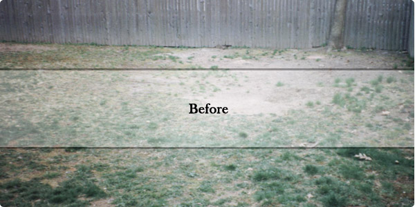 Before and after landscaping shots from The Great Outdoors, Inc. jobs around Portland Maine!